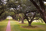 Couple under canopy of Southern Live Oaks at Oak Alley plantation antebellum mansion house by Mississippi at Vacherie, USA