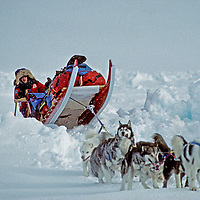 INTL.ARCTIC PROJECT, Will Steger's dog team pulls sled over a pressure ridge on frozen Arctic Ocean.