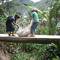 Guatemala: Fairtrade