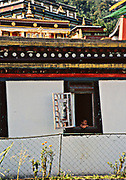 Young monk at Rumtek monastery gazing out the window