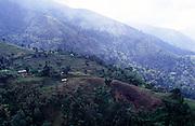 Subsistence farming landscape, Blue Mountains, Jamaica