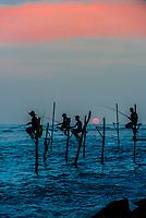 Stilt fishermen, south coast of Sri Lanka.