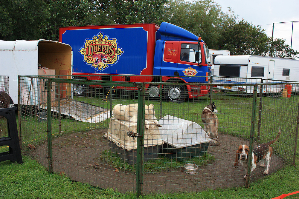 Animal rights campaigners note that the use of domestic animals in circuses carry the same welfare and ethical concerns as wild animals. Dogs and horses often live in small pens, transported from town to town and subject to similar training methods as wild animals