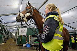 Gazelle de la Brasserie of Karin Donckers with groom Jori Gildersleeve<br /> Departure of the horses from Liege Airport to Lexington<br /> Alltech FEI World Equestrian Games - Kentucky 2010<br /> © Dirk Caremans