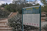 Hamasrek (Comb) Nature reserve is a forest located in the Jerusalem Hills, Israel
