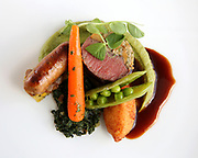 food, culinary team, competition, entry, entries, plates, meals, dining, hospitality, 071514
