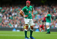 Rugby Union - 2019 pre-Rugby World Cup warm-up (Guinness Summer Series) - Ireland vs. Wales<br /> <br /> Josh van der Flier (Ireland) at The Aviva Stadium.<br /> <br /> COLORSPORT/KEN SUTTON