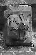 The Stone Bestiary - Black and white photo art print of Norman Romanesque exterior corbel no 33  -  sculpture of.very modern cartoon like hound and a hare. In the Bestiary dogs are like preachers who put men back on the right course of righteousness and the hare represents men who fear God and put their trust in the creator . The Norman Romanesque Church of St Mary and St David, Kilpeck Herefordshire, England. Built around 1140 .<br /> <br /> Visit our LANDSCAPE PHOTO ART PRINT COLLECTIONS for more wall art photos to browse https://funkystock.photoshelter.com/gallery-collection/Places-Landscape-Photo-art-Prints-by-Photographer-Paul-Williams/C00001WetsxVxNTo