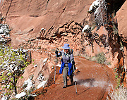 A hiker dodges spring runnoff on the West Rim Trail on the way to Angels Landing and Scout Lookout. Zion National Park adjoins Springdale, Utah, USA. The North Fork of the Virgin River carved spectacular Zion Canyon through reddish and tan-colored Navajo Sandstone up to half a mile (800 m) deep and 15 miles (24 km) long. Uplift associated with the creation of the Colorado Plateaus lifted the region 10,000 feet (3000 m) starting 13 million years ago. Zion and Kolob canyon geology includes 9 formations covering 150 million years of mostly Mesozoic-aged sedimentation, from warm, shallow seas, streams, lakes, vast deserts, and dry near-shore environments. Mormons discovered the canyon in 1858 and settled in the early 1860s. U.S. President Taft declared it Mukuntuweap National Monument in 1909. In 1918, the name changed to Zion (an ancient Hebrew name for Jerusalem), which became a National Park in 1919. The Kolob section (a 1937 National Monument) was added to Zion National Park in 1956. Unusually diverse plants and animals congregate here where the Colorado Plateau, Great Basin, and Mojave Desert meet.