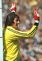 Ray Clemence (England) Scotland v England  24/05/1980  Credit : Colorsport