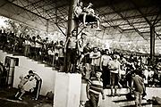 Kirkpinar wrestling. Turkey.