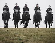 2015-12-23 - Hamilton Police Services - Horses