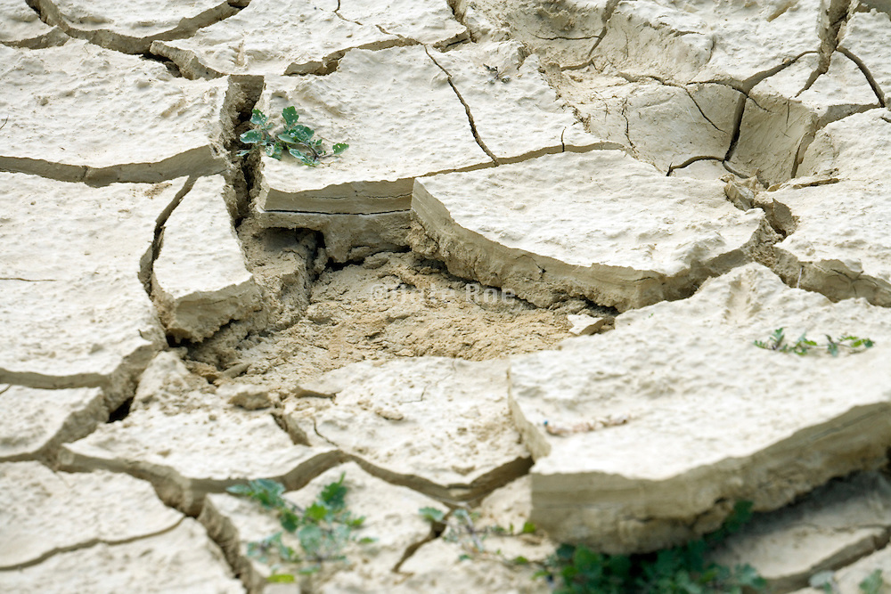 close up of dried up land
