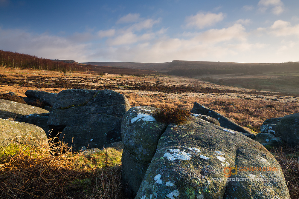 Dawn light catches the gritstone textures of Owler Tor's scattered boulders in the Longshaw Estate, Peak District. Looking towards Upper Burbage. Derbyshire, England, UK. February, winter, 2014