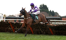 Oh Land Albloom ridden by Jack Andrews competes in the Start Your RacingTV Free Trial Now Handicap Hurdle during Midlands Raceday at Warwick Racecourse.