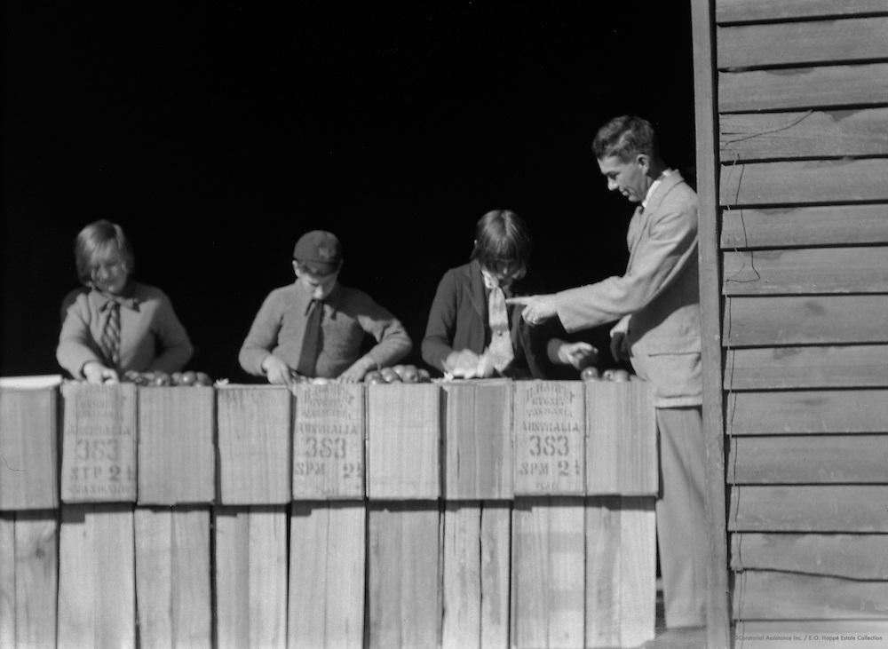 Children Packing Apples, Cygnet, Tasmania, Australia, 1930