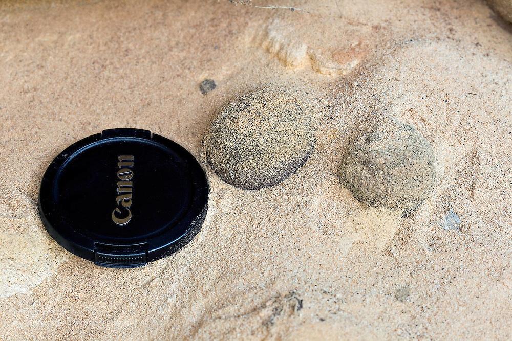 Iron Nodules in Triassic Sandstone - Tasmania, Australia