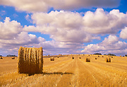 Bales and cumulus clouds. Shellbrooke; Saskatchewan; Canada