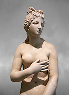 2nd century AD Roman marble sculpture of Aphrodite (Venus), 'Dresden Capitoline Type, copied from a Hellanistic Greek original,  inv 6238 Farnese Collection, Naples Museum of Archaeology, Italy ..<br /> <br /> If you prefer to buy from our ALAMY STOCK LIBRARY page at https://www.alamy.com/portfolio/paul-williams-funkystock/greco-roman-sculptures.html . Type -    Naples    - into LOWER SEARCH WITHIN GALLERY box - Refine search by adding a subject, place, background colour, etc.<br /> <br /> Visit our ROMAN WORLD PHOTO COLLECTIONS for more photos to download or buy as wall art prints https://funkystock.photoshelter.com/gallery-collection/The-Romans-Art-Artefacts-Antiquities-Historic-Sites-Pictures-Images/C0000r2uLJJo9_s0