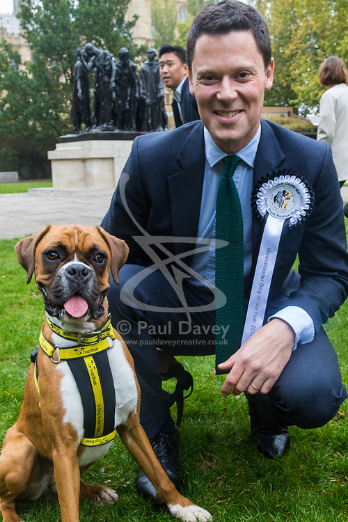 London, October 26 2017. Alex Chalk MP (Conservative Cheltenham) with Boxer Ruby, a Dogs Trust rescue dog at the annual Kennel Club and Dogs Trust Westminster Dog Of The Year competition that sees MPs and members of the House of Lords with their dogs as well as rescue dogs from the Dogs Trust. © Paul Davey