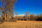 Mt Baldy provides a winter backdrop to the Townsend Wildlife Management Area, Montana.