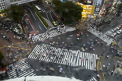 October 5, 2018 - Tokyo, TOKYO, JAPAN - People with their umbrellas walk at the Shibuya Crossing in Tokyo, Japan in Oct. 5, 2018. (Credit Image: © Ringo Chiu/ZUMA Wire)
