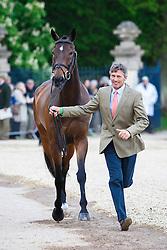 Nicholson Andrew, (NZL), Calico Joe<br /> First Horse Inspection<br /> Mitsubishi Motors Badminton Horse Trials - Badminton 2015<br /> © Hippo Foto - Libby Law<br /> 06/05/15