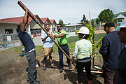 Volunteers plant trees on Earth Day in partnership with Our City Forest at Sinnott Elementary School in Milpitas, California, on April 22, 2017. (Stan Olszewski/SOSKIphoto)