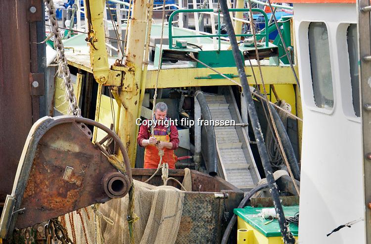 Nederland, Breskens, 5-9-2019 In de haven van deze kustplaats in Zeeuws Vlaanderen liggen vissersschepen. Eentje heeft zojuist op garlanen gevist en de bemanning gaat die verder wassen en verwerken voordat ze naar de afslag, veiling, gaan . Foto: Flip Franssen