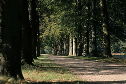 Boekesteijn
