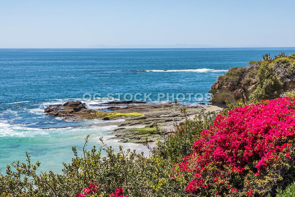 Scenic Seascape Along the Coast of Laguna Beach