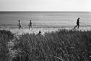 På stranden vid Holmhällar, Gotland.
