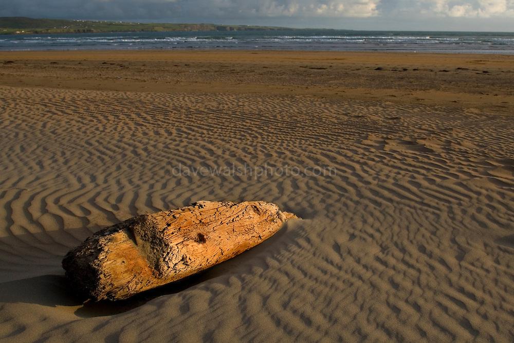 Driftwood on Lahinch Beach, Clare, Ireland.