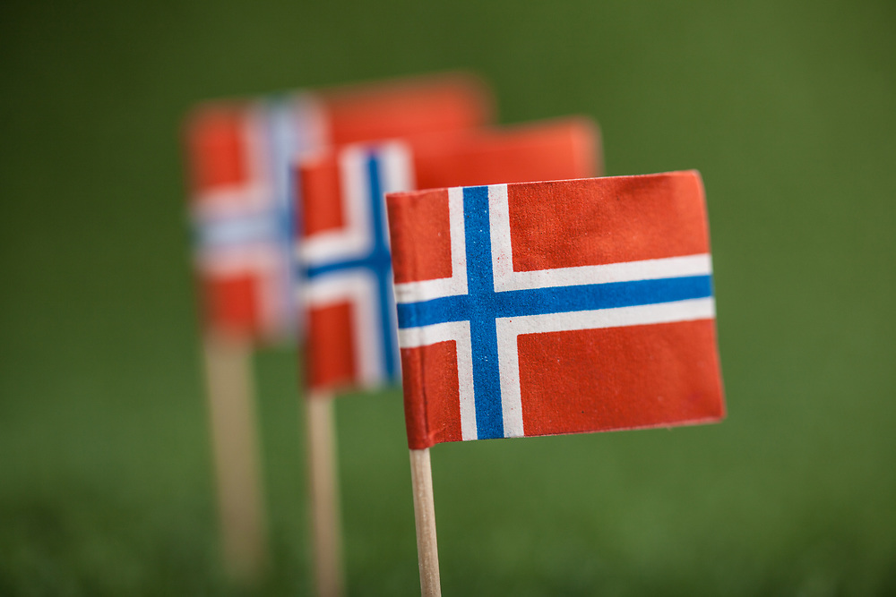Norsk flagg med trepinne på grønt kunstress. Foto tatt med macro-objektiv, stor dybdeuskarphet.