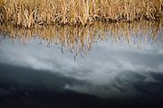 The dark skies of autumn reflected in the ponds of Lee Metcalf National Wildllife Refuge.