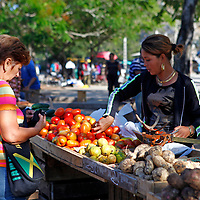 Central America, Cuba, Santa Clara. Buying tomatoes at the local farmer's market in Santa Clara, Cuba.