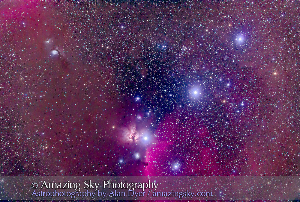 The Belt of Orion with the Horsehead Nebula at botton, the dark nebula set in the bright emission nebula IC 434. The nebula at left of the Zeta Orionis (aka Alnitak) is the Flame Nebula, NGC 2024. The reflection nebula at upper left is the M78 complex with NGC 2071. The other Belt stars are Alnilan (centre) and Mintaka (upper right). The field contains a wealth of other blue reflection and red emission nebulas. <br /> <br /> Taken from Australia, March 2014 with the Borg 77mm astrographic apo refractor (330mm focal length) at f/4.3 for a stack of 5 x 10 minute exposures with the filter-modified Canon 5D Mark II at ISO 800.