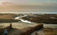 SCHIERMONNIKOOG - Waddeneiland Schiermonnikoog.  laag water , eb , ANP COPYRIGHT KOEN SUYK