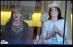 Princesses Beatrice and Eugenie cheer the queens winning horse Estimate on as it wins the Gold Cup with her horse at Royal Ascot 2013 Ascot, United Kingdom,<br /> Thursday, 20th June 2013<br /> Picture by Andrew Parsons / i-Images
