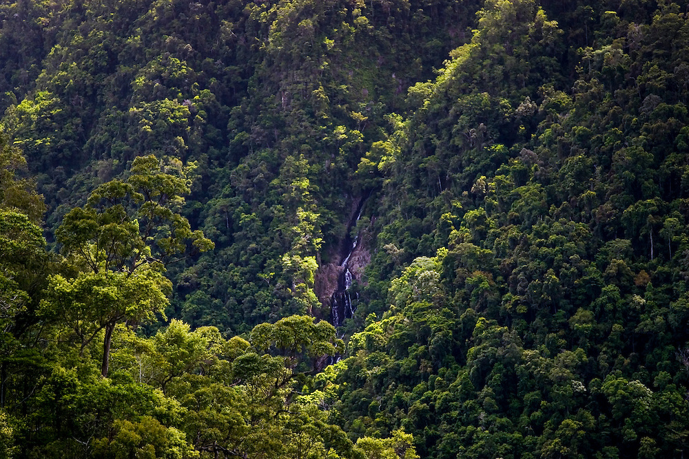 Stoney Creek Falls, North Queensland, Australia