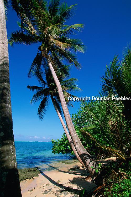 Melekeok, Babeldaoh, Palau, Micronesia<br />