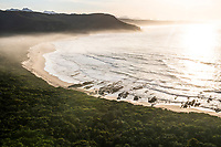 Dawn over the coastal forest and coastline at Natures Valley, Garden Route National Park, Western Cape, South Africa