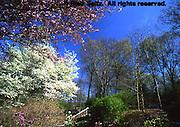 Philadelphia gardens and arboretums, Jenkins Arboretum, Chester Co., PA