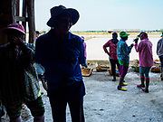 28 MARCH 2018 - BAN LAEM, PHETCHABURI, THAILAND: Workers gather in a salt warehouse before their shift during the 2018 salt harvest in Petchaburi province, about two hours south of Bangkok. Sea salt is made in provinces south of Bangkok by flooding fields with ocean water after the rainy season. As the fields dry out from evaporation, workers go into the fields and gather the salt left behind.          PHOTO BY JACK KURTZ