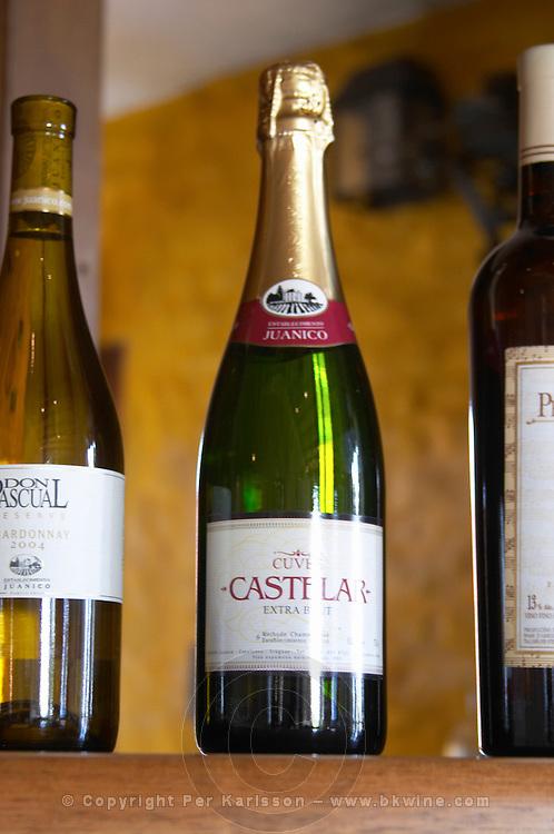Bottle of the sparkling wine Cuvee Castelar Extra Brut Methode Champenoise (traditional method) Bodega Juanico Familia Deicas Winery, Juanico, Canelones, Uruguay, South America