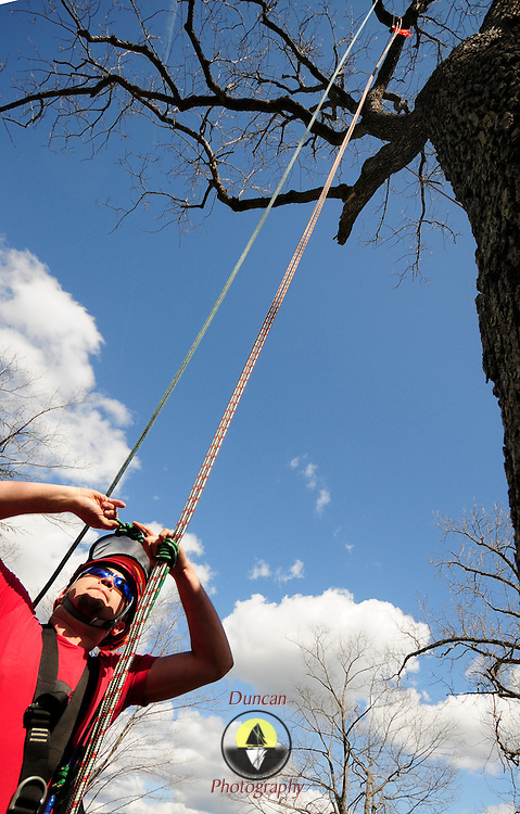 "April 18, 2009 -- BATH, Maine. Seth Moody, a professional arborist from Caribou and Camden Maine secures his harness before climbing 42 feet straight up to a ring a bell while competing in a tree climbing competition in Library Park in Bath on Saturday afternoon. Six professional arborists from around New England raced against each other in several different events. In this event climbers had to hoist themselves up the rope using a technique known as ""footlock""  because they shim up a harness rope by wrapping it over their foot and sliding a chair up to the top. Competitor Bear Scovil of Manchester Vt. said, ""This event requires more agility than it does strength. You'll see the best climbers develop a rhythm of swinging back and forth as they move up the rope.""   Organizer Tim Lindsay of Scarborough said, ""It's a fun event and we are a supportive community . . .  we learn and are able to share best practices in safety -- while still competing against each other. "" Photo by Roger S. Duncan."