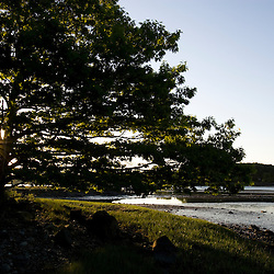 Early morning at the Creek Farm Preserve in Portsmouth, New Hampshire.  Sagamore Creek at low tide.  Society for the Protection of New Hampshire Forests property.  Spring.