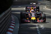 May 20-24, 2015: Monaco Grand Prix: Daniel Ricciardo (AUS), Red Bull-Renault