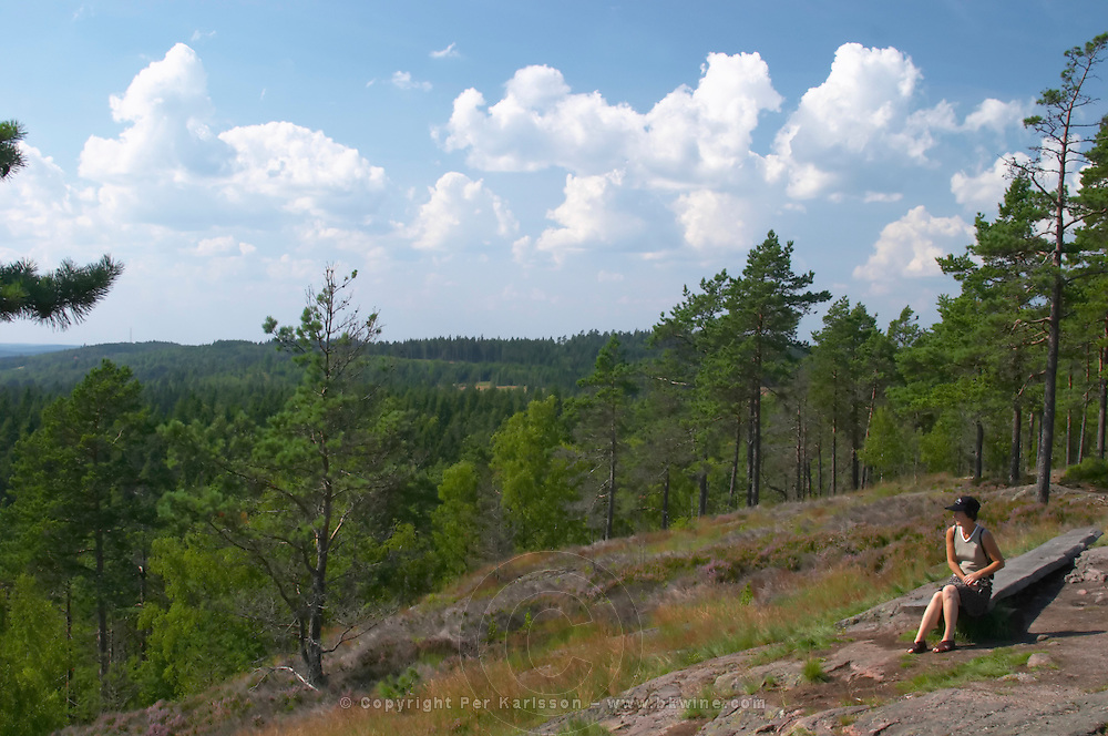 A woman enjoying the panoramic view from Skuruhatt, one of Småland's highest points, 337 m above sea level. Smaland region. Sweden, Europe.