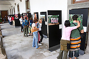 "Peter Menzel's photo exhibition, ""Man Eating Bugs: The Art and Science of Eating Insects"" in Viterbo, Italy. (First International Biennial of Photography on Science and Culture) Viterbo Italy."
